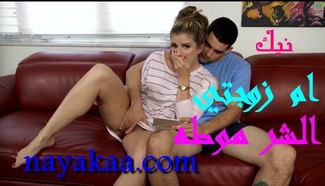 نيك ام زوجتي الشرموطه